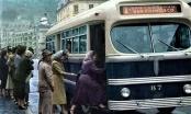 Buses White y Mack en Bogotá (1948-1960)