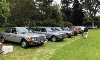 Encuentro del Mercedes-Benz W123 club